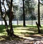 Governador Alckmin repassa Parque Ecológico às prefeituras de Barueri e de Santana de Parnaíba, neste domingo (22)