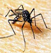 ATENÇÃO! Casos de 'Dengue' em Alphaville, hoje confirmados pelo Residencial 3