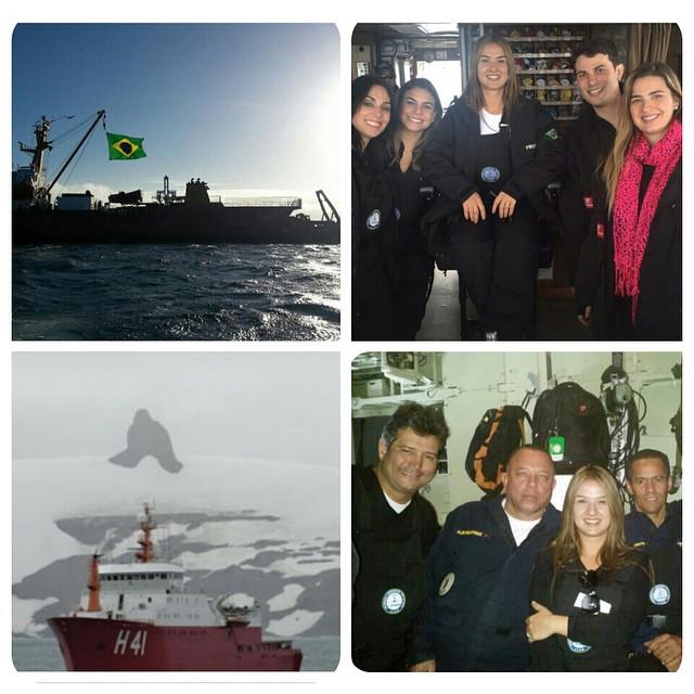 bruna antartica 1