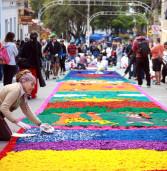 Santana de Parnaíba celebra feriado de Corpus Christi com tradicional montagem de tapetes/ Santana de Parnaíba celebrates holiday of Corpus Christi with traditional mounting carpets