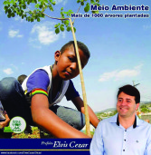 Projeto Arborizar de Santana de Parnaíba planta 1.000 árvores