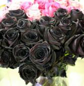 Rosas negras chegam ao mercado florista