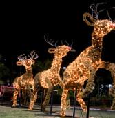 Natal de Luz em Santana de Parnaíba inaugura dia 08 de dezembro com presépio articulado e queima de fogos