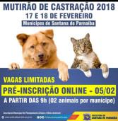 Só HOJE: inscrição para o Mutirão de Castração de Cães e Gatos em Santana de Parnaíba
