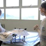 Prefeitura de Barueri reabre campanha de castração gratuita de animais de 21/05 a 8/06