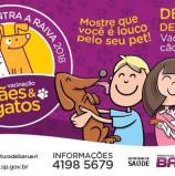 Barueri: Campanha de vacinação contra raiva animal acontece no mês de agosto no Cine Teatro Alphaville. Conheça toda a programação para a cidade, aqui.
