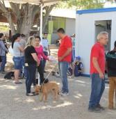 Prefeitura de Barueri informa: Cadastramento para castração e microchipagem de pets ocorre até dia 13/08