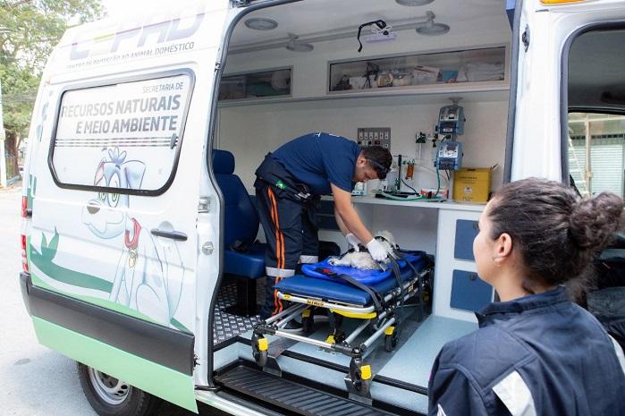 ambulância animal barueri