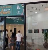 Pets esperam um novo lar em feira de adoção promovida pelo Parque Shopping Barueri, neste sábado