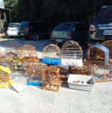 Barueri – Cetas recebe animais vítimas de tráfico da Polícia Civil Ambiental