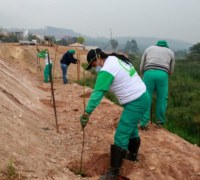 Semana do meio ambiente terá diversas atividades sustentáveis.699